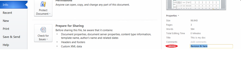 showing and retrieving custom document information panel properties