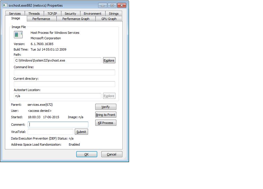 kill svchost.exe access denied