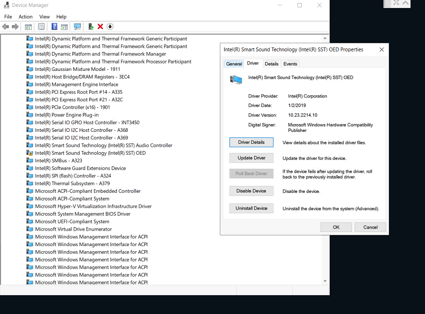 Audio driver and MaxxAudio Pro are not working - Windows 10