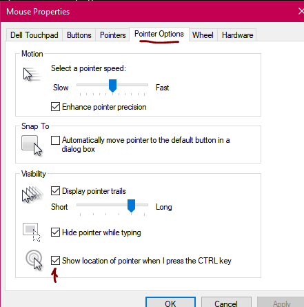 I'm not able to see my Mouse when using a particular program