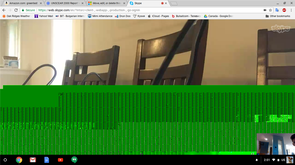 Skype for web - half of incoming video is green - Microsoft Community