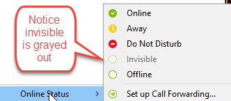 How to Permanent Skype unlink and Permanent Invisible Option