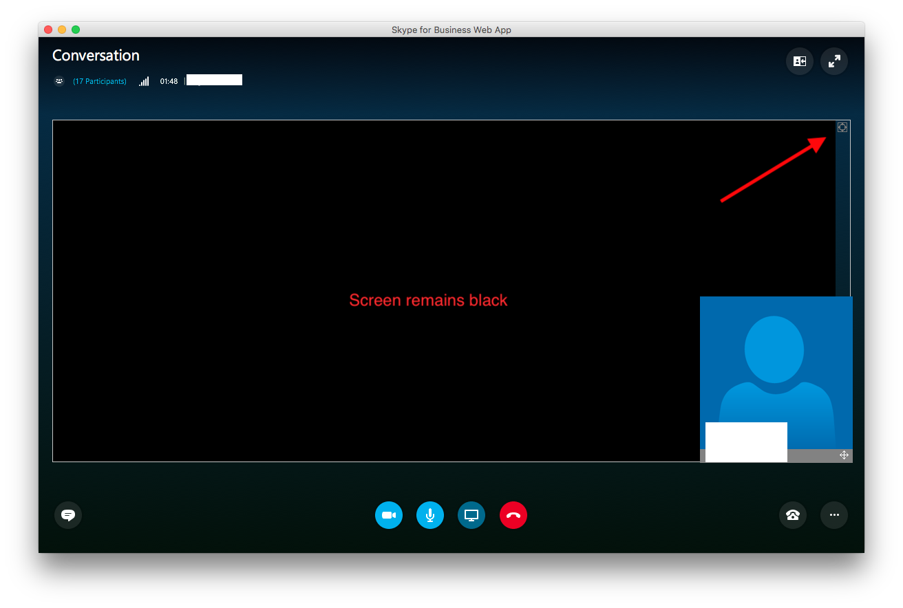Skype Privacy Settings