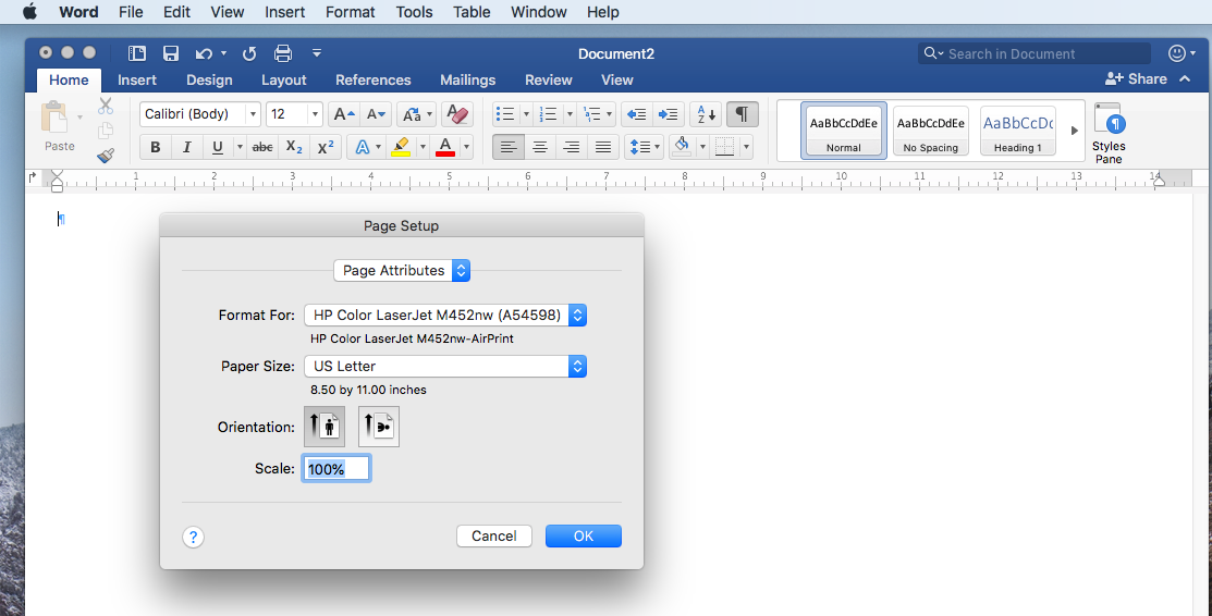 custom page size in word mac