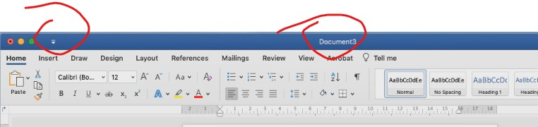 Quick Access Toolbar totally disappears Word Mac ...