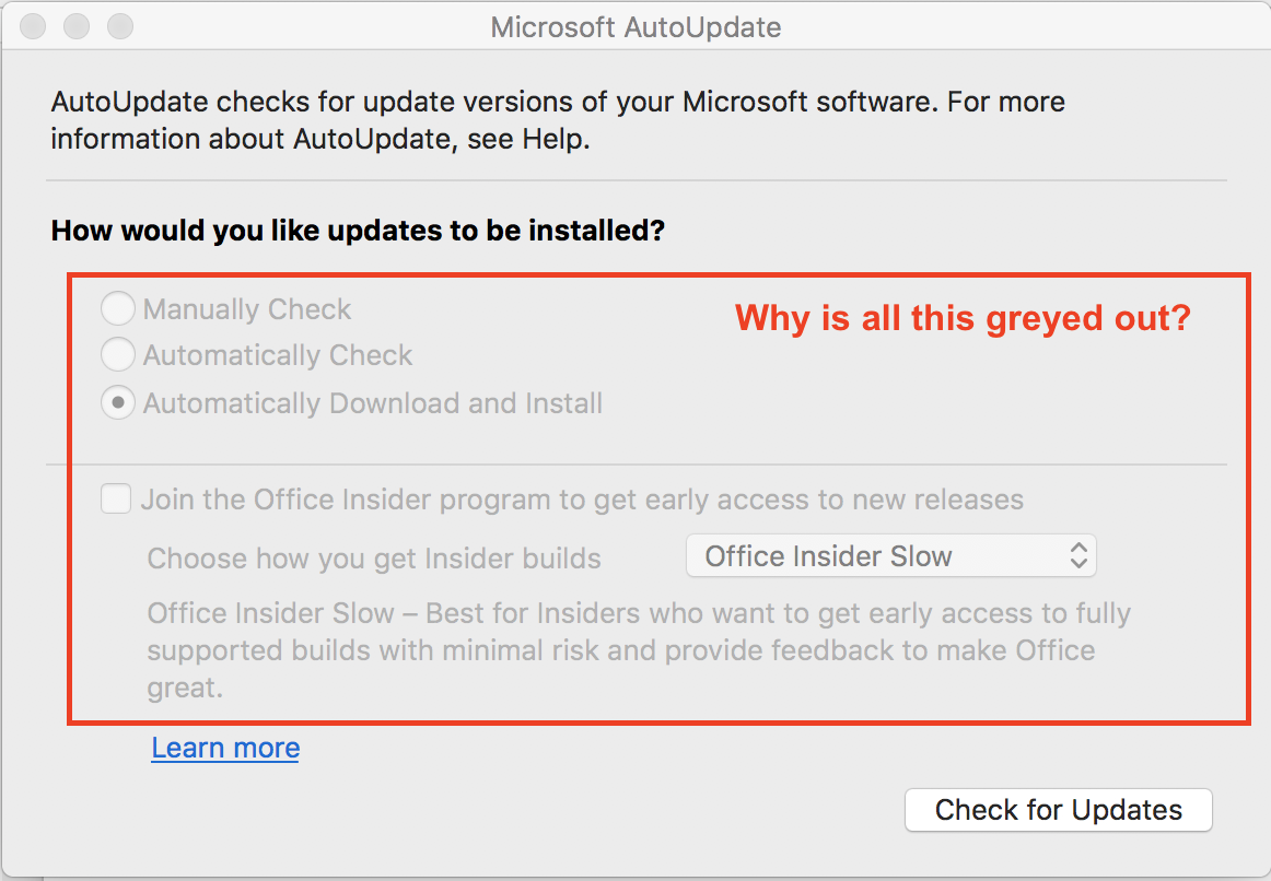 The ability to select the Office Insider Program is greyed