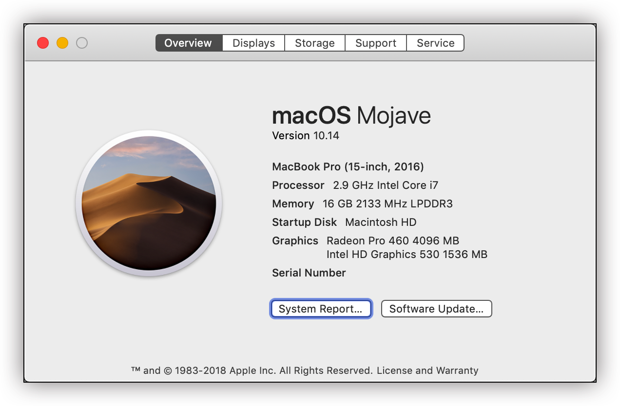Word and Excel take 20 seconds to launch in MacOS Mojave - Microsoft