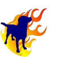 ¡Firedog